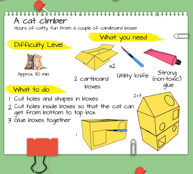 Build Your Cat a Better Life with These DIY Cat Projects